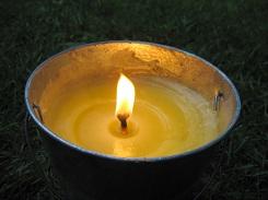 citronella (1)